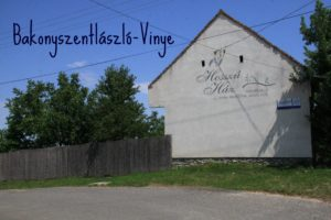 kisokos_vinye